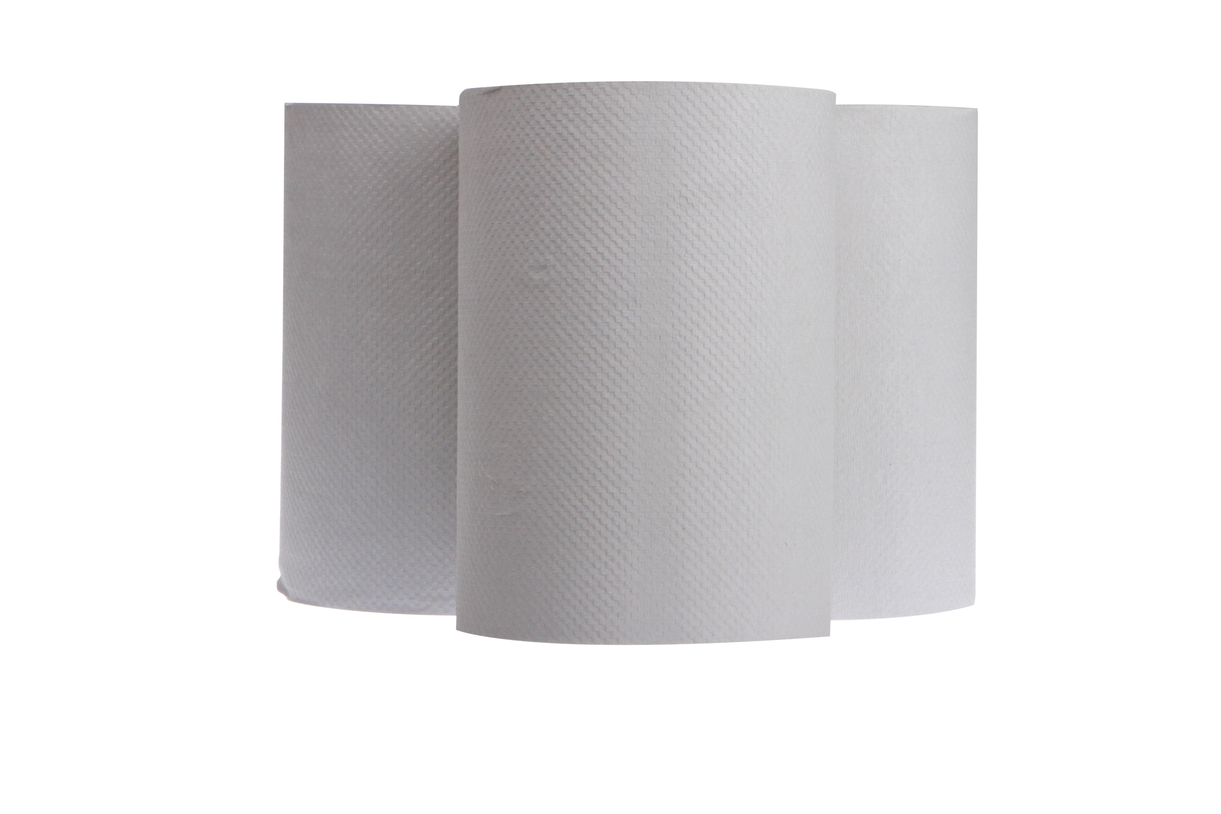 EcoSoft Premium Hand Towel Roll 1Ply 80M