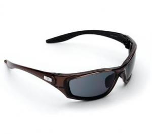 Mercury Glasses Smoke Lens 8202 - Click for more info